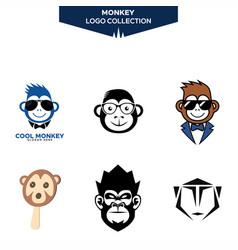 monkey logo collection vector image