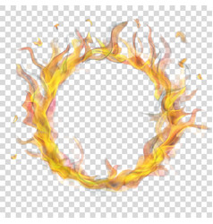 ring of fire flame with smoke vector image