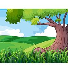 A big tree at the hills vector
