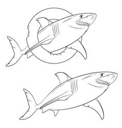 Drawing of a terrible shark vector