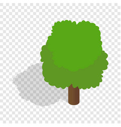 Fluffy tree isometric icon vector