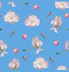 sakura seamless pattern pink cherry blossom vector image