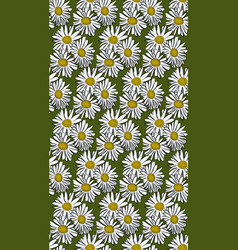 Seamless pattern with chamomile vector