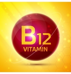 Vitamin B12 icon vector