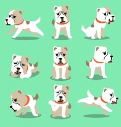 Cartoon character alabai dog poses set vector image