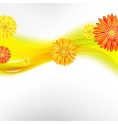 Abstract Background With Color Gerbers Flowers vector image