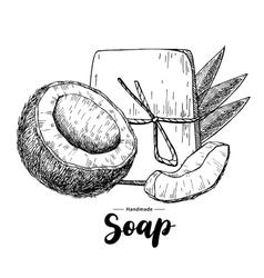 Handmade natural soap hand drawn organic vector image vector image