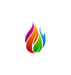 color fire logo icon design vector image