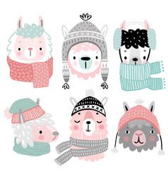 cute llamas in winter clothes childish alpaca vector image