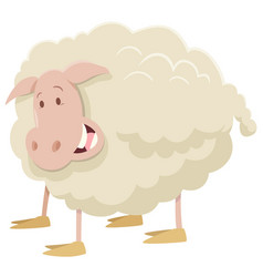 Farm sheep animal character vector