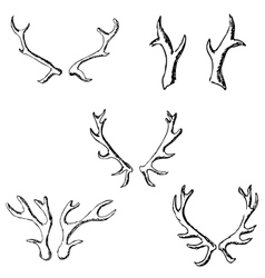 Horn sketch of a deer Pencil drawing by hand vector image vector image