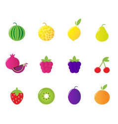 tropical berries fruit icons vector image vector image