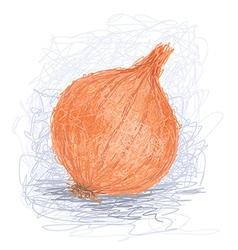 Closeup of a fresh orange onion bulb vector