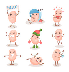 Funny soy bean characters set cute soybean with vector