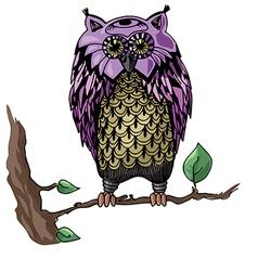 Owl on a branch vector