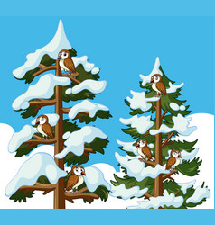 many owls on the pine trees vector image