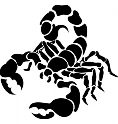 scorpion illustration vector image