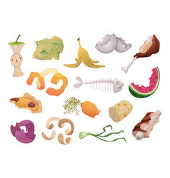 Waste foods recycling organic trash fruits meat vector