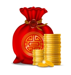 Chinese money bag vector image