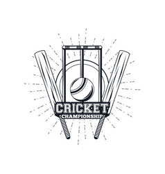cricket equipment player vector image