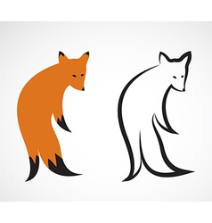 group of fox design on white background vector image