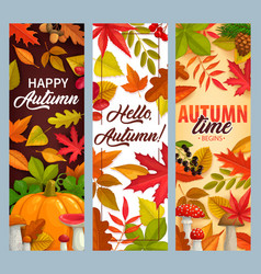 Hello autumn banners with falling leaves vector