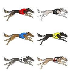 Set of running dog saluki breed vector image