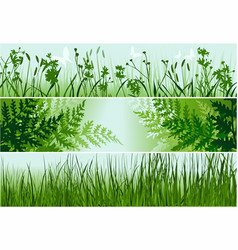 three nature banners vector image