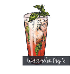 watermelon mojito cocktail vector image