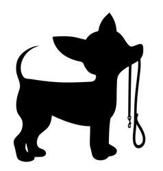 Chihuahua Leash vector image