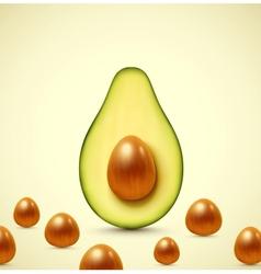 Half an avocado vector image vector image