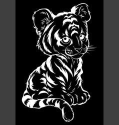 cute baby tiger lies vector image