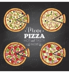 Four types of color pizza on a black board vector