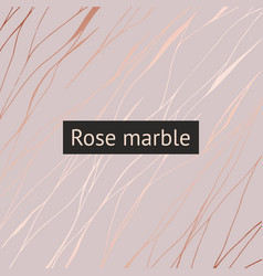 rose marble decorative pattern for design vector image