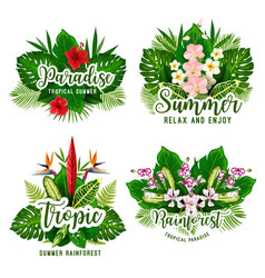 Tropical paradise card for summer holiday design vector