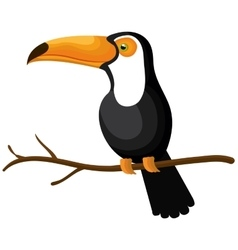 toucan bird isolated icon vector image vector image