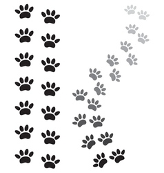 Sape paw1 vector image vector image