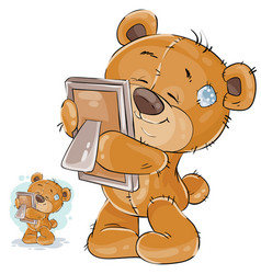 a brown teddy bear misses vector image