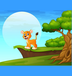 Cartoon lion near the cliff vector