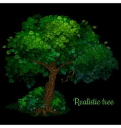 Green tree isolated on a black background vector