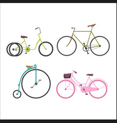 hipster bicycle flat vector image
