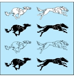 Set of silhouettes running dog saluki breed vector