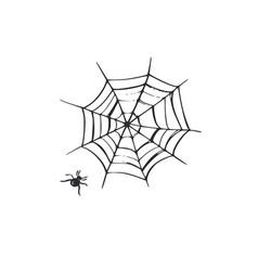spiderweb hand drawn cartoon vector image