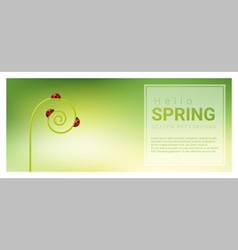 Hello spring background with red ladybugs 3 vector image vector image
