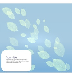 Background with transparents leaves vector image vector image