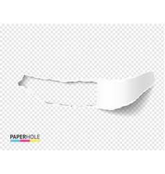 Empty torn paper hole banner with scrolled vector