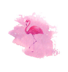 Flamingo on watercolor pink spot background vector