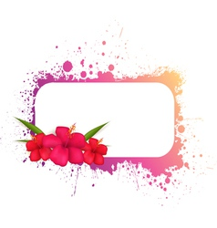 Grunge frame with hibiscus vector