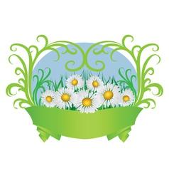 Daisies and ribbon vector image vector image