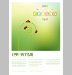 Hello spring background with red ladybugs 4 vector image vector image